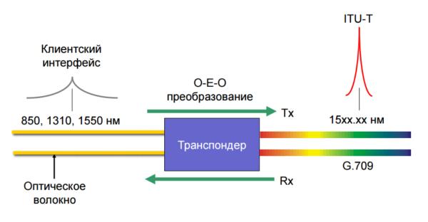 transponder_dwdm